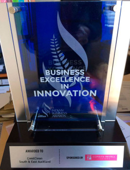 The 'Business Excellence in Innovation' award.