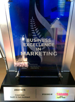 The 'Business Excellence in Marketing' award.